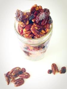 pecan cranberry trail mix