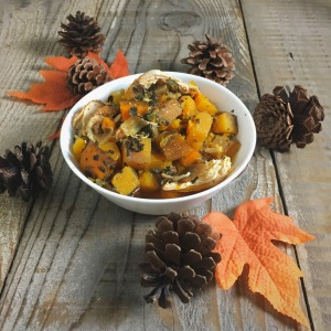 butternut squash and chicken stew, stew, paleo, crockpot, slow cooker, fall